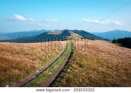 Amazing scene on autumn mountains. Orange grass and rural road in fantastic morning sunlight. Carpathians, Europe. Landscape photography
