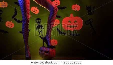 Holiday Halloween With Funny Carnival Costumes On A Halloween Background. 31 October. Sexy Woman On