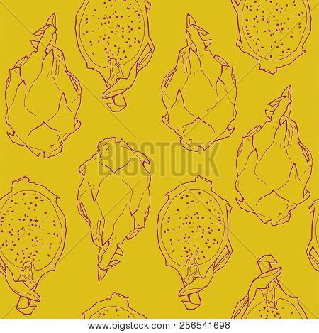Vector Hand Drawn Abstract Tropical Light Beige Seamless Pattern Of Exotic Fruit Pitaya. Dragon Frui
