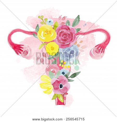 Beautiful Illustration With Watercolor Part Of Woman Body Uterus With Flowers