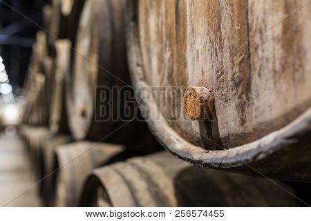 Cork of a wooden porto wine barrel in wine cellar of Porto, Portugal.