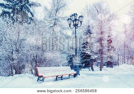 Winter landscape with falling winter snowflakes- bench covered with snow among frosty winter trees in the park. Winter picturesque scene, colorful winter landscape. Snowy winter landscape view
