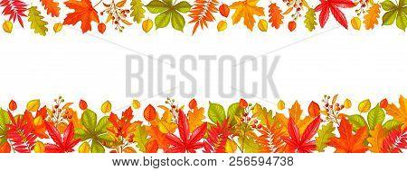 Seasonal Hello Fall Page Design Or Border With Autumn Foliage Maple, Oak, Elm, Chestnut, Leaves Rhus