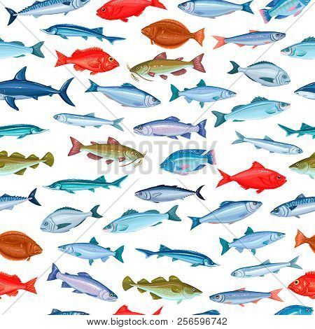 Seamless Pattern Fish. Background Seafood With Salmon, Anchovy, Codfish, Sea Bass, Ocean Perch And S