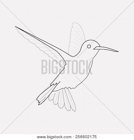 Humming Bird Icon Line Element. Vector Illustration Of Humming Bird Icon Line Isolated On Clean Back