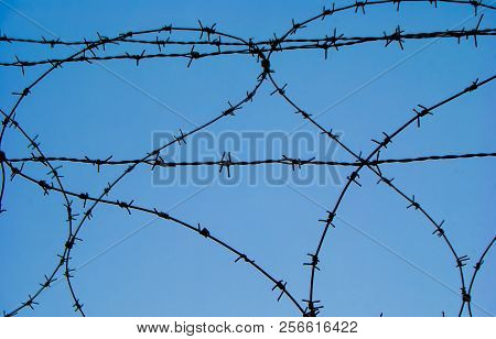 Metal barbed wire of an enclosure military zone poster