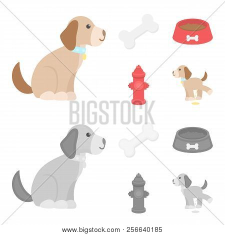 A Bone, A Fire Hydrant, A Bowl Of Food, A Pissing Dog.dog Set Collection Icons In Cartoon, Monochrom