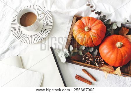 Autumn Breakfast In Bed Composition. Blank Card, Notebook Mockup. Cup Of Coffee., Eucalyptus Leaves