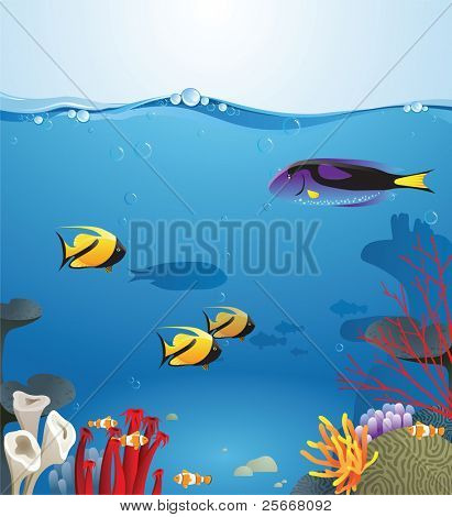 Sea landscape illustrating underwater life