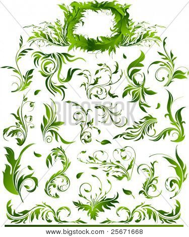 vector frame, flowers and floral elements collection