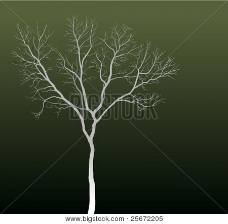 Abstract background. Tree silhouette