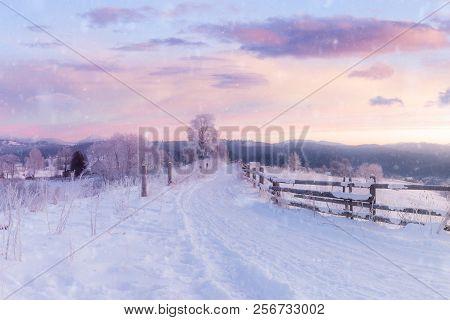 Panorama Of Winter Mountain Snowy Hills. Beautiful Winter Season Landscape