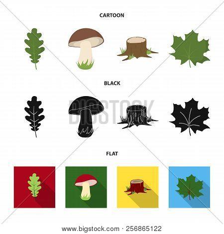 Oak Leaf, Mushroom, Stump, Maple Leaf.forest Set Collection Icons In Cartoon, Black, Flat Style Vect