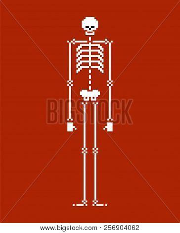 Skeleton Pixel Art. Skull And Bone 8 Bit. Vector Illustration.