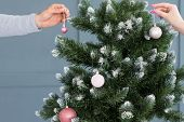 christmas tree decoration. family holiday traditions. hands hanging elegant ball embellishments to a green spruce. poster