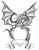 Dragon Insignia poster