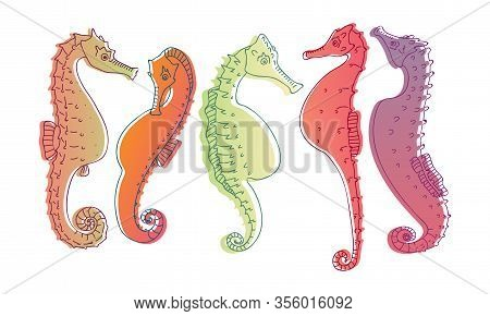 Stylized Sea Horses With Bony Armour And Prehensile Tail Vector Set