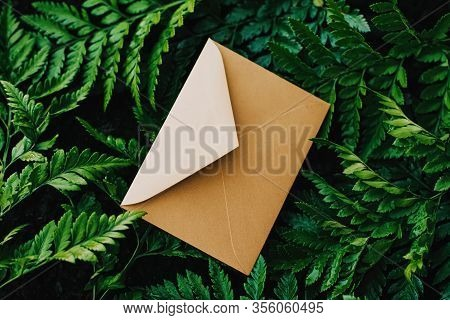 Blank Envelope And Green Leaves In Nature, Paper Card As Background, Correspondence And Newsletter