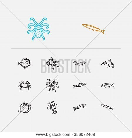 Aquatic Icons Set. Salmon And Aquatic Icons With Turbot, Seafood And Crab. Set Of Crayfish For Web A