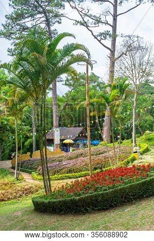 Dalat, Vietnam - April 15, 2019: Flower Beds In Tropical Park With Palms In Dalat Vietnam