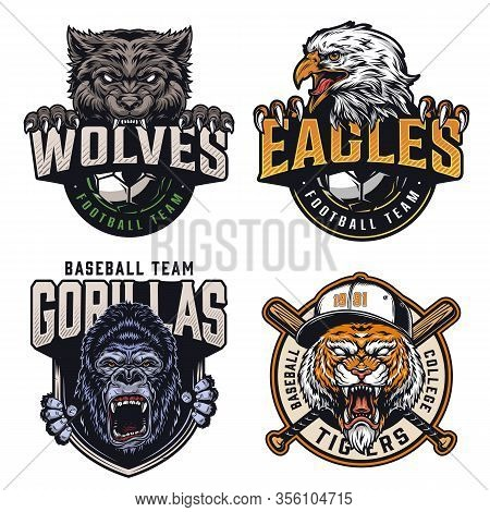 Colorful Sports Clubs Vintage Emblems With Cruel Animals Mascots Soccer And Baseball Teams Names Ins