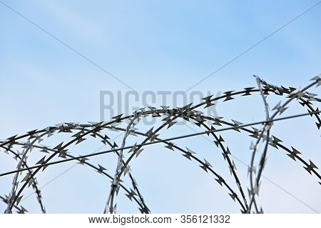 Close Up Barbwire Security Rolls Protection Over Blue Sky Background With Copy Space, Low Angle Side