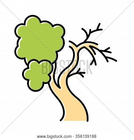 Fig Tree Color Icon. Old Half Dead Tree. Healthy Leaved Part And Dying Part Symbol. Biblical Plant O