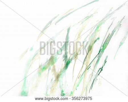 Green And Olive Grass Blades. Abstract Grass Background. Light Fresh Colors On White Paper.