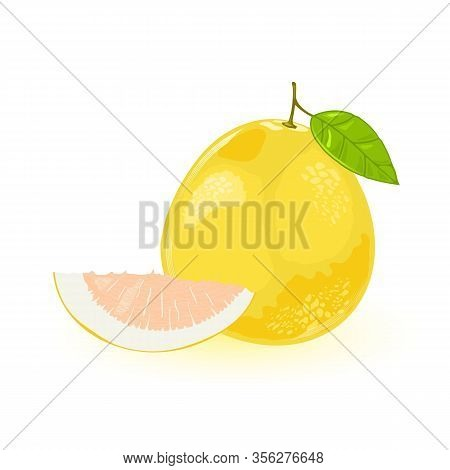 Pomelo Or Shaddock Whole With Green Leaf And Segment Of It. Yellow Sweet Largest Citrus Fruit With P