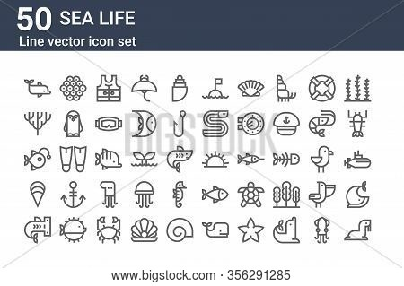 Set Of 50 Sea Life Icons. Outline Thin Line Icons Such As Sea Lion, Shark, Clam, Anglerfish, Coral,
