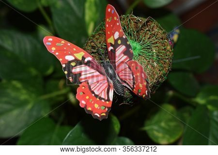 Decorative Butterfly For Houseplant Interior Decor Closeup Stuck On Garden Coir Pole Moss