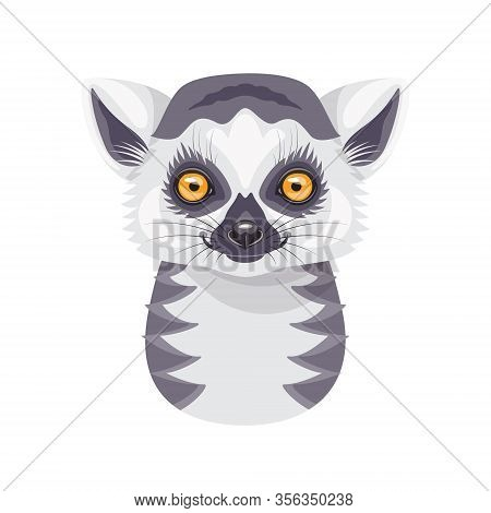 Funny Ring-tailed Lemur Face Or Head Isolated On White Background. Cartoon Cute Furry Wild Animal Ve