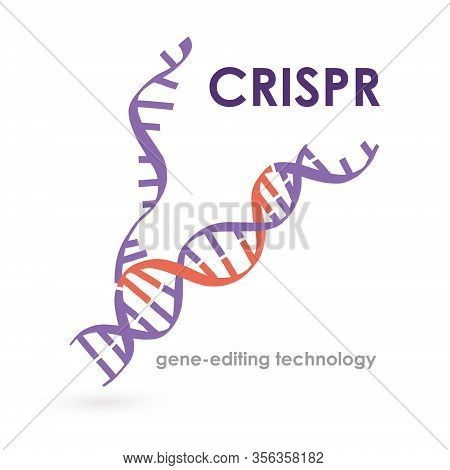 Banner Inscription Crispr Gene-editing Technology. Important Scientific Questions. Cell Engineering