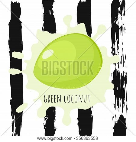 Template Poster With Green Coconut Fruit In Cartoon Style On Hand Draw Brush Striped Background. Asi
