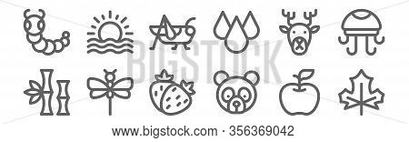 Set Of 12 Nature Icons. Outline Thin Line Icons Such As Leaf, Panda Bear, Dragonfly, Deer, Grasshopp