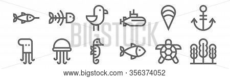 Set Of 12 Sea Life Icons. Outline Thin Line Icons Such As Seaweed, Fish, Jellyfish, Clam, Seagull, F