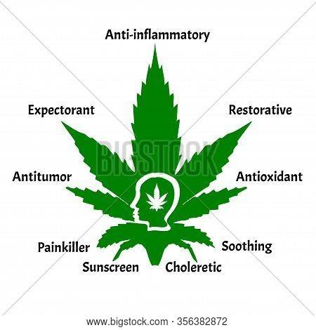 Useful Properties Of Hemp Oil. Marijuana Icons Cbd. Cannabinoid Logo. Marijuana Leaves. Hemp Oil. In