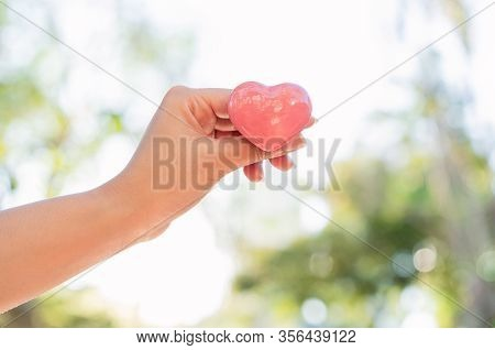 Hand Of Diverse Asian Woman Holding Pink Heart In Bright Afternoon Sun Outdoors With Green Tree Natu