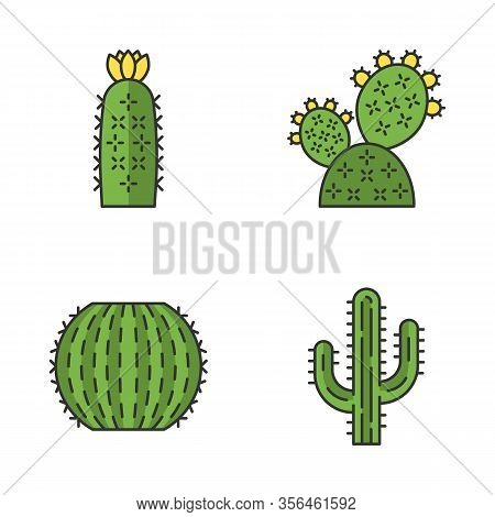 Wild Cactus Color Icons Set. Desert Flora. Succulents. Spiny Plants. Prickly Pear, Barrel, Hedgehog