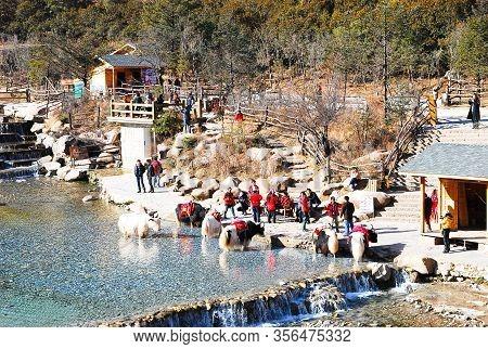 Lijiang, Yunnan, China - 14 May 2012 : Blue Moon Valley In Jade Dragon Snow Mountain, Lijiang, Yunna