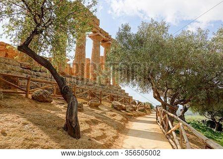 The Path And Trees Below The Temple Of Juno (tempio Di Giunone - Hera Lacinia) In Valley Of The Temp