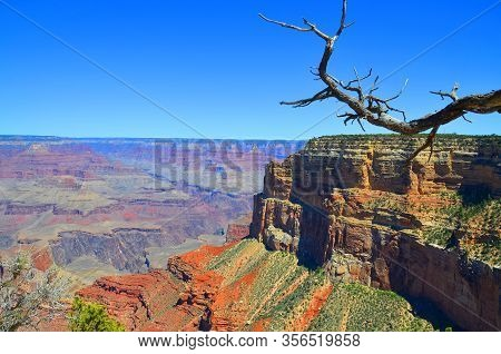 Grand Canyon Is A Steep-sided Canyon Carved By The Colorado River  Adjacent Rim Are Contained Within