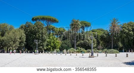 Rome, Italy - July 3, 2017: Tropical Trees On The Piazzale Napoleone