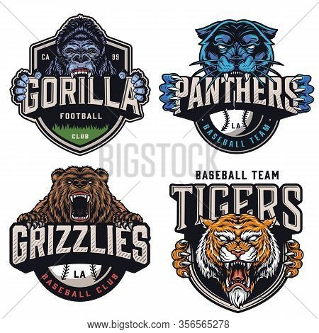 Sports Teams Colorful Vintage Badges With Cruel Aggressive Gorilla Panther Bear Tiger Mascots And Ba