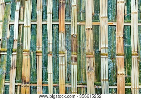 Fence Of Fresh Green Bamboo