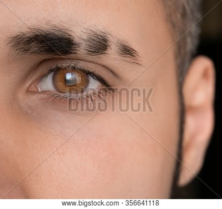 Bright Eye Look , Eyebrow With Scar, Sharp Brown Eye, Close-up Man Eye