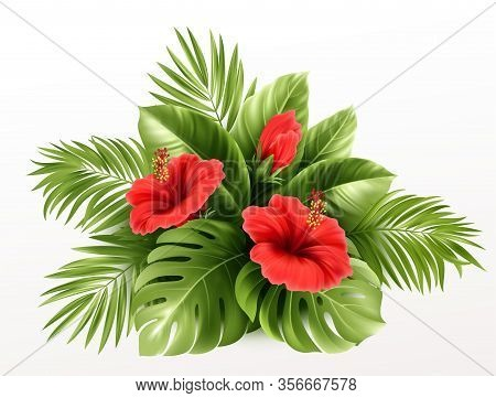 Exotic Tropical Hibiscus Flowers And Monstera Leaves, Palm Leaves Of Tropical Plants Isolated On Whi