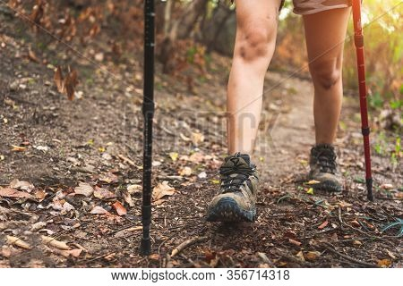 Children Hiking In Mountains Or Forest With Sport Hiking Shoes. Girls Or Boys Are Walking Trough For
