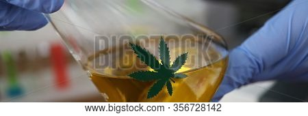 Close-up View Of Laboratory Assistant Hands Holding Vessel With Liquid Cannabinoid Oil. Glass Bottle