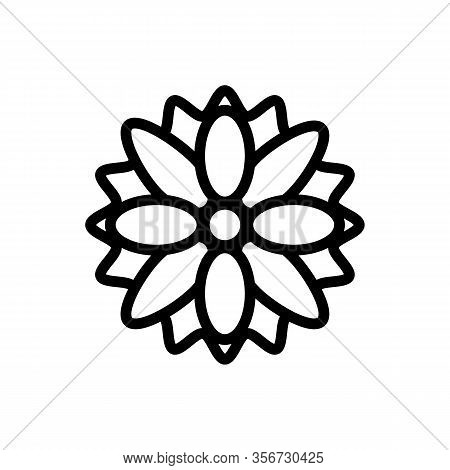 Summer Chrysanthemum Icon Vector. Summer Chrysanthemum Sign. Isolated Contour Symbol Illustration